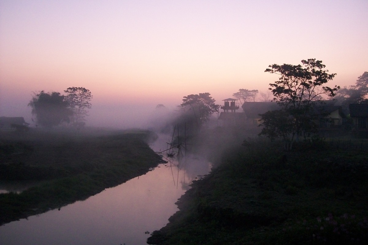 A winter morning in the Kaziranga National Park