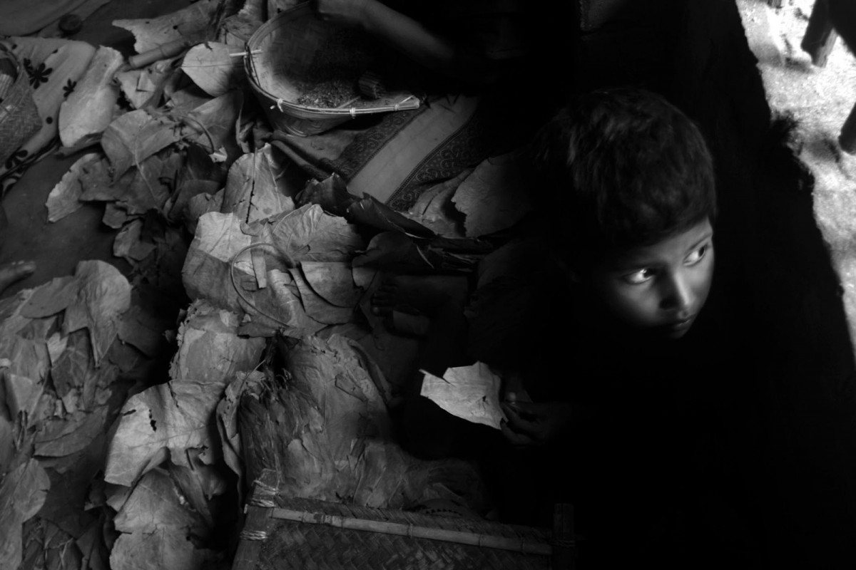 Raja Ul, 8 years old, makes bidi (a leaf-rolled cigar made by tobacco prepared for smoking) at Manoharpur village, Hasnabad, 108 north from the eastern Indian city of Kolkata on 22nd August, 2009.The bidi rolling industry has been forcing the involvement of children especially minor girls at the age between eight and ten as part of a working family. Recent study has recommended that the provisions of this Child Labour Act should be strictly enforced with immediate effect to prevent engagement of minor girls from this occupation at the cost of a lost childhood. Children bidi workers are suffering from health problem and basically they suffer from lung infection and even tuberculosis. Bidi rollers are constantly exposed to tobacco dust and hazardous chemicals. They experience exacerbation of tuberculosis, asthma, anaemia, giddiness, postural and eye problems, and gynecological difficulties. When bidis are stored in the house, food spoils quicker and family members experience nausea and headaches.
