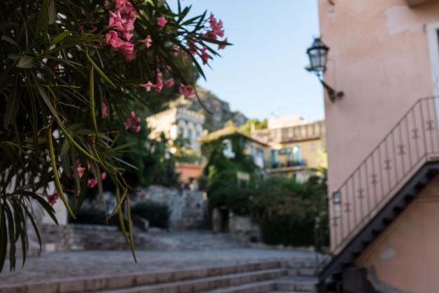 Sicily Flowers