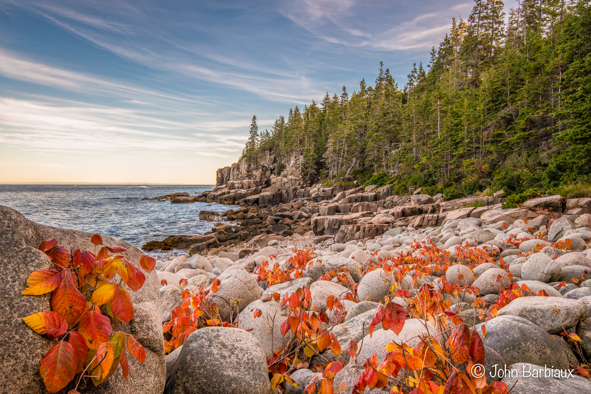 Acadia National Park, fine art photography, landscape photography, autumn, fall, foliage, ground cover, professional photography