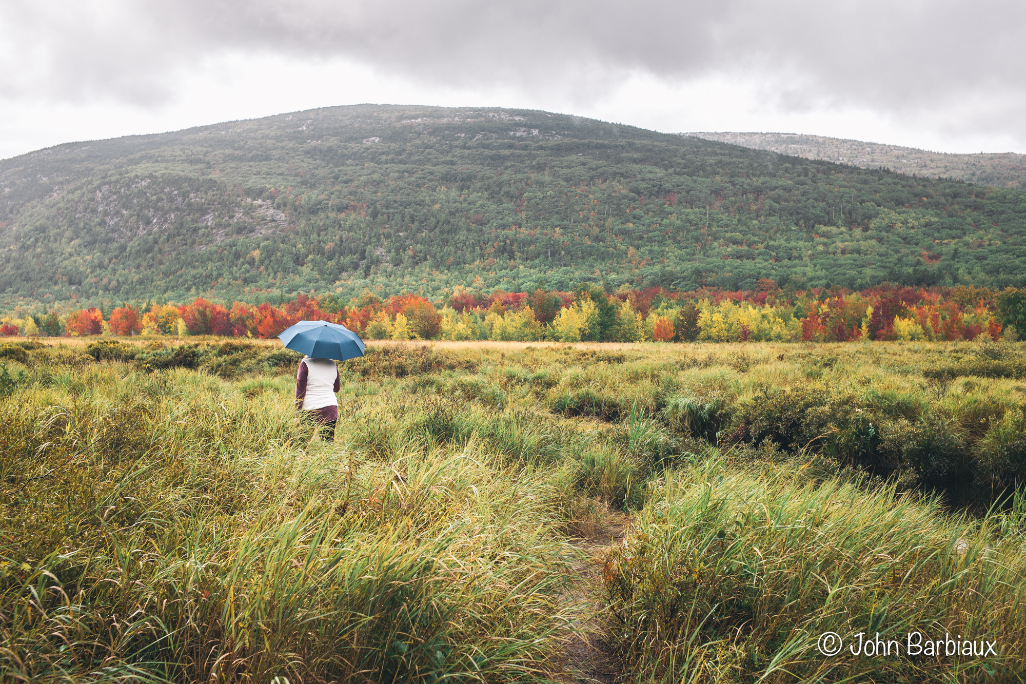 Acadia National Park, Rainy weather, photography, Leica, Leica M10-P, street photography, national park photography, fall, foliage, autumn, Maine
