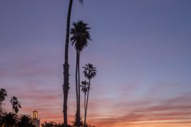 Santa Barbara, Butterfly Beach, shore, ocean, sunrise, palm trees, light trails, Leica, Leica m10-p, montecito